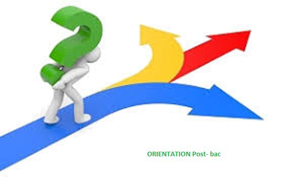 orientation 3.jpg